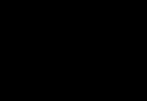 MBP_logo_Black_prawo_przezroczyste